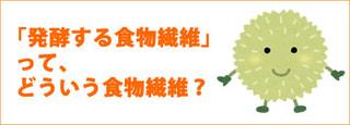発酵性食物繊維というのは、どんな食物繊維のこと?