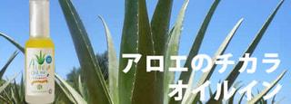 「アロエのチカラ」の新製品登場! オイルイン タイプです。